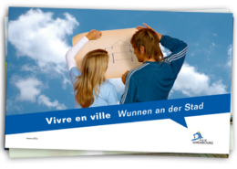 vdl-habillage-stand-01